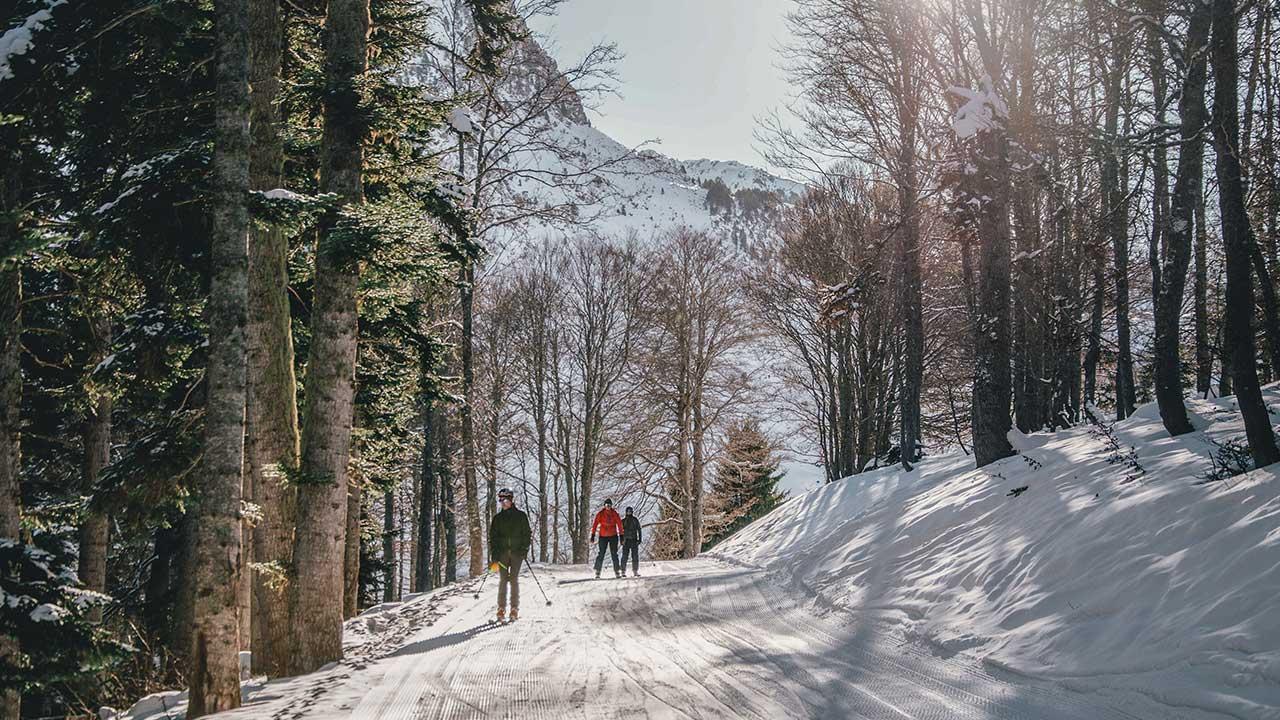 ski sapin Grand Tourmalet - ©RICT