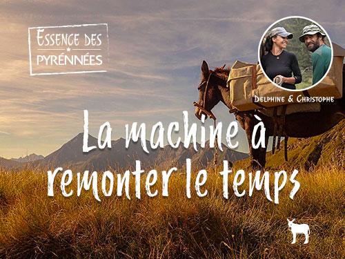 Artahe, une randonnée accompagnée de mules dans les Pyrénées