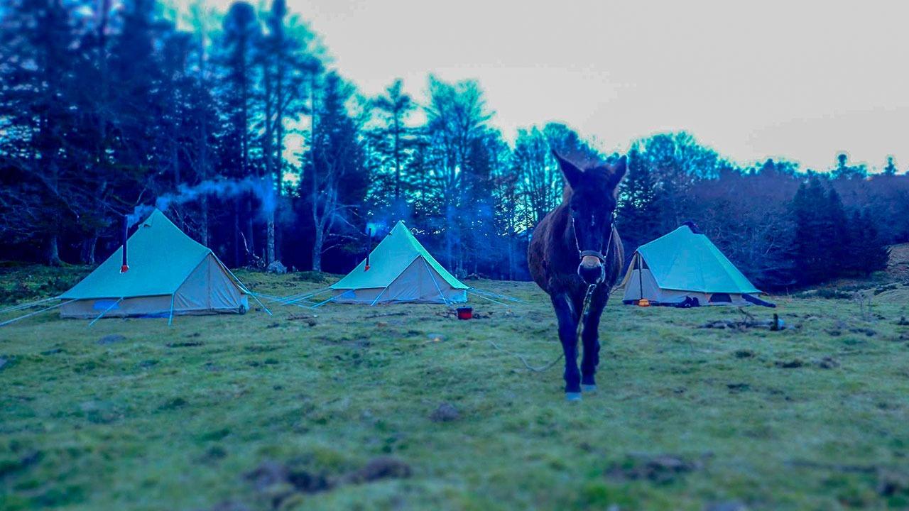 campement Artahe