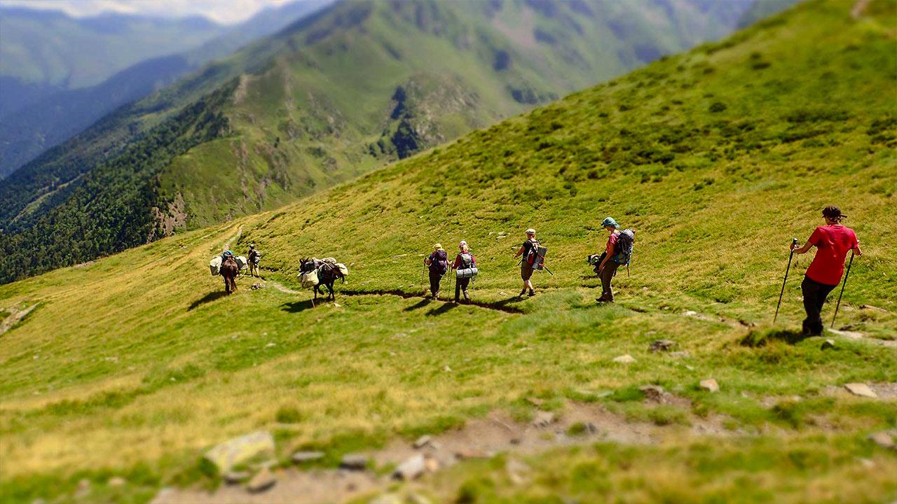 itinérance avec les mules