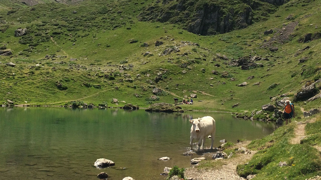 randonnee hautes pyrenees lac d'arou