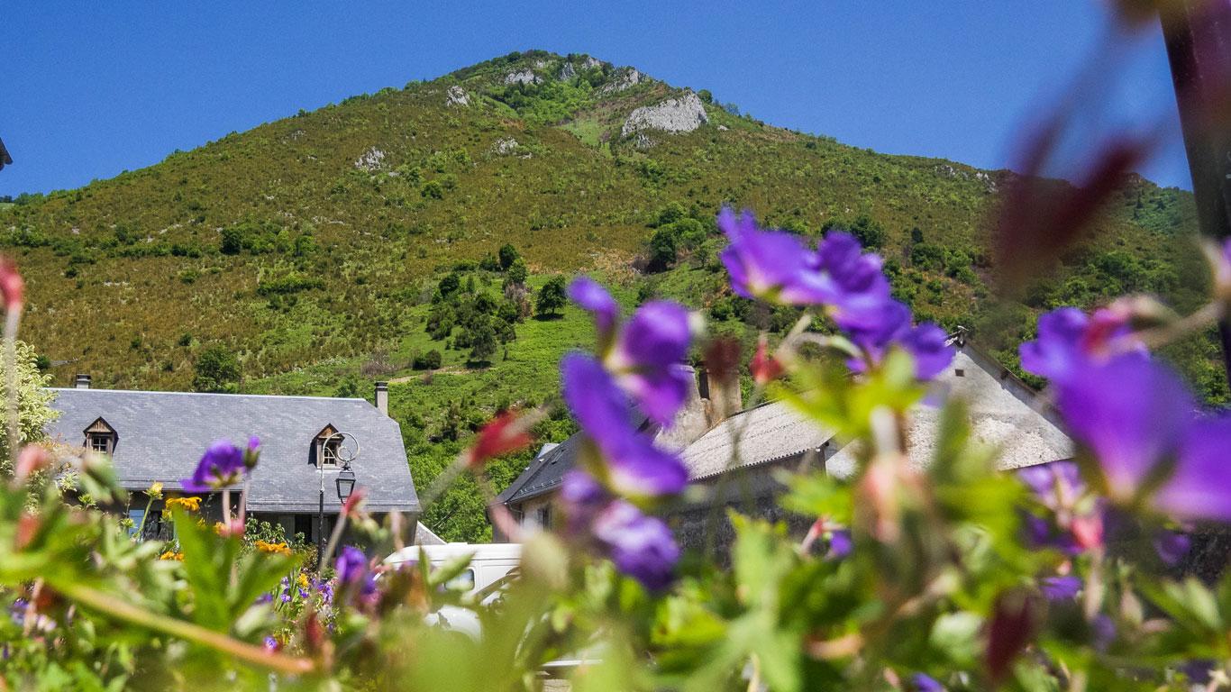 Les montagnes qui entourent le village vu derrière des fleurs