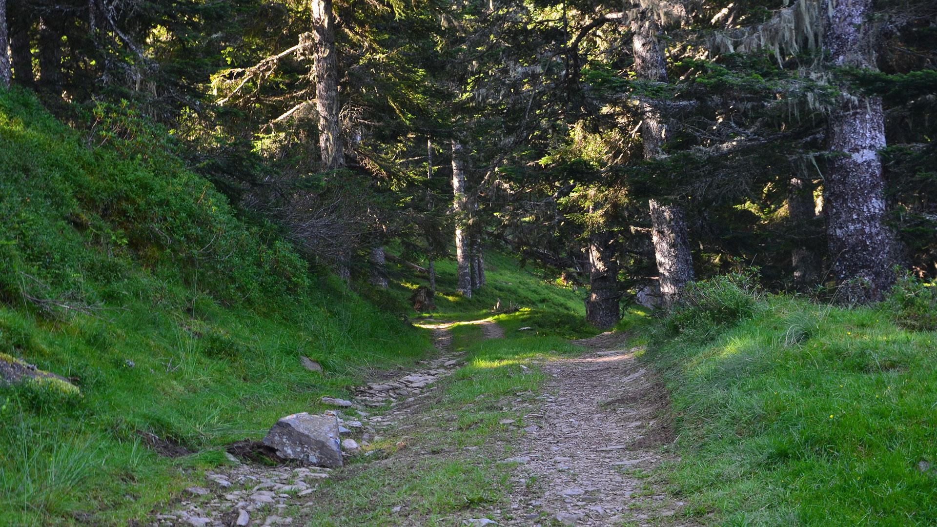 Chemin de la Hount Blanque