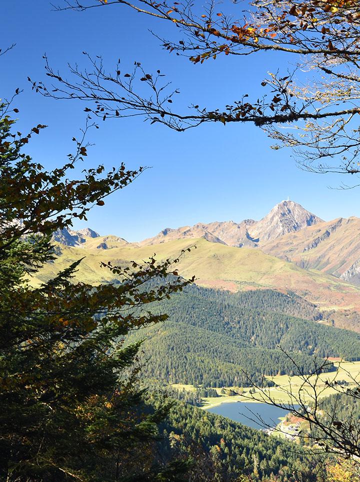 Vue en hauteur du lac de Payolle entre les arbres