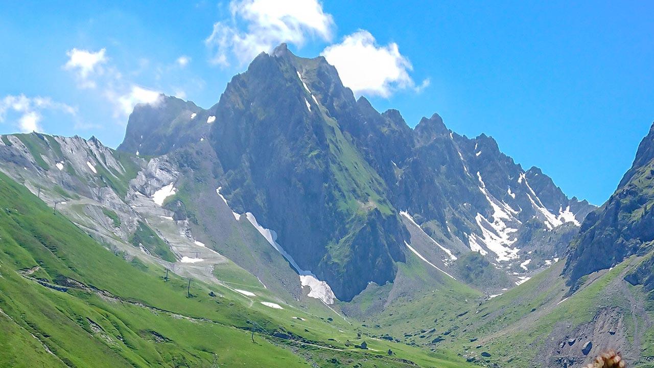 Montagne La Mongie Flore