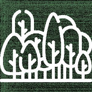 Logo foret